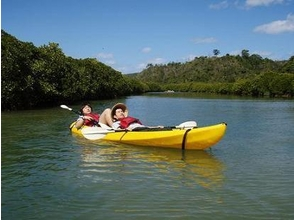 【沖縄・国頭郡】1dayコース:マングローブ・カヌー&リバートレッキングの画像