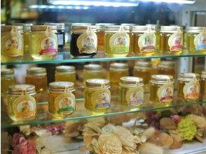 690【熊本・八代】くまもっと 養蜂場直営店で楽しむ 15種の利きハチミツ&蜜蝋キャンドル手作り体験