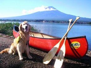 [Yamanashi ・ Lake Kawaguchi] Walk on the lake with your dog! Canoe dog training course! ? Canoeing experience with pets