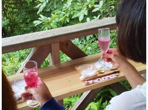 【広島・神石高原】天空の日本庭園と食べる薔薇☆プレミアムな森林セラピーツアー <日帰り> 近隣エリア限定割引実施中|RCC イマナマ!放送