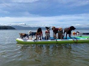 【滋賀・琵琶湖】琵琶湖でワンコとSUP(サップ)♪♪愛犬と一緒にSUP