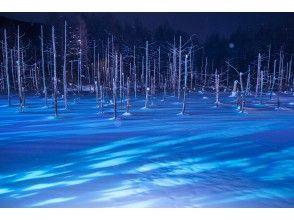 3月【北海道・札幌発着】冬の旭山動物園とライトアップ青い池&白ひげの滝・日帰りバスツアーのコ