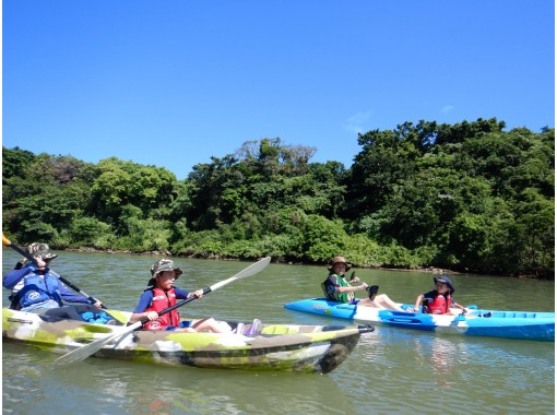 """Regional common coupon OK! Main island / Chubu! Mangrove Kayak! Group Sale! """"3 dense"""" measures are perfect! ★ girls trip adult care ★ 4 people in the deals! Image presentの紹介画像"""