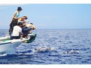 [東京小笠原群島]鯨的圖像觀察(1天課程)