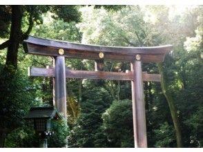 [Tokyo] Meiji Jingu shrine and Harajuku walk