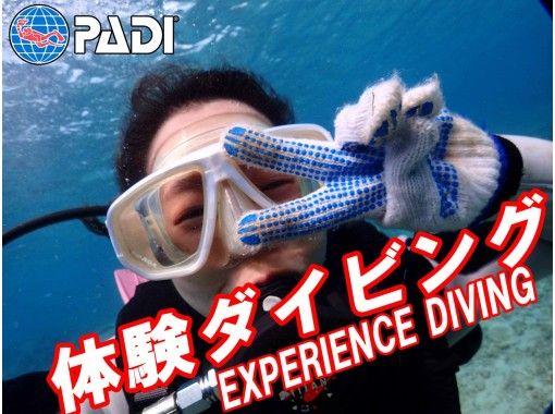 沖縄本島送迎可能!沖縄本島体験ダイビング/初心者/お1人様大歓迎!素敵な水中写真・編集動画プレゼント!希望があればシュノーケリングも!!