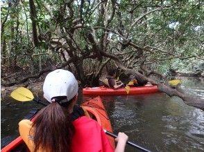 【沖縄・西表島】世界自然遺産登録地!1.カヌー体験クーラの滝つぼ&沢歩き半日(午前)、写真データ、軽食付き