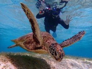 【宫古岛/半天】⑭2 人气活动集中在半天!苏泊尔独木舟和海龟浮潜 [无照片数据]
