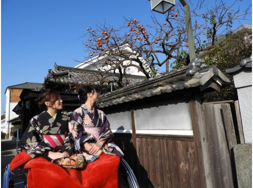 【徳島・美馬市】江戸時代へタイムスリップ!うだつの町並みで人力車体験(20分コース)