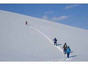 Enjoy winter Hokkaido, leisurely Snowshoes tour in Sapporo city Moerenuma Park de