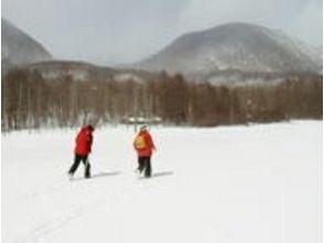 [櫪木,Okunikko自然日光圖像滑雪(越野滑雪)