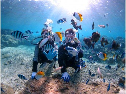 [沖縄繩恩納]從海上欣賞神秘的景色!藍洞體驗深潛計劃の紹介画像