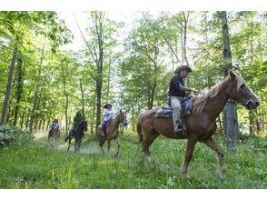 【北海道・札幌】乗馬体験ツアー!ワイルドライドアドベンチャーの画像