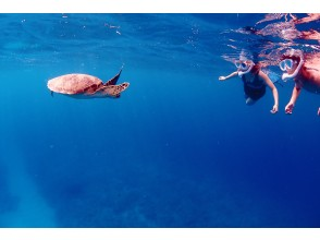 [沖縄石垣島]海龜和珊瑚礁通氣管!半天課程(上午/下午),附有水下照片禮物!