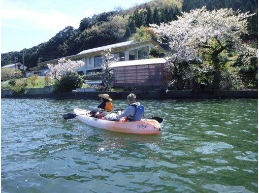 【春カヤック】湖上でお花見! 三方五湖コース [2時間]