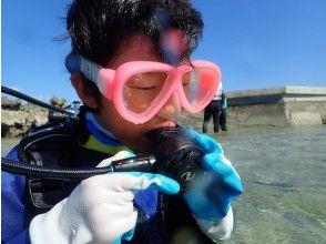 【沖縄・宮古島】新たな世界へご招待!ビーチ体験ダイビング!!水中カメラのレンタル無料!!