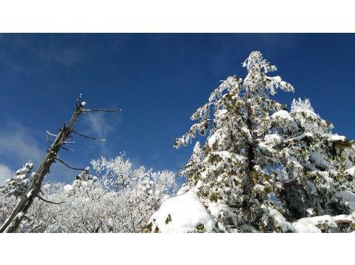【岐阜・高山】位山をスノーシュー体験~初心者おすすめ!山岳ガイドの案内・送迎付き!