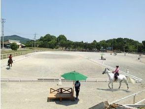 [岡山加賀郡]沒有經驗的人的歡迎!騎馬(草原課程)的圖像