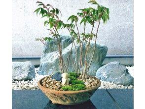 はじめての苔盆栽づくり☆お地蔵さんのいる風景