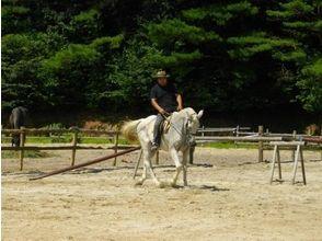 【愛知・瀬戸】初心者・初めての方歓迎!体験乗馬プランの画像