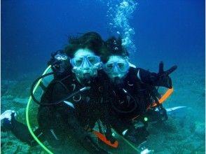 【午前・午後】初めての方OK!屋久島で体験ダイビング(半日コース)