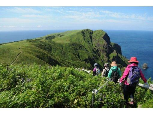 Rebun Island Nature Guide