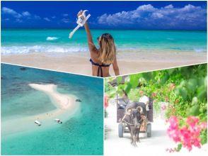 [From Ishigaki Island / No. 1 in popularity] ⑮ Full of charm of remote islands! Phantom island landing & snorkeling & leisurely sightseeing on Taketomi Island [Photo data free]