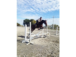 【岡山・加賀郡】経験者限定!乗馬体験(障害飛越・馬場馬術クリニックコース)