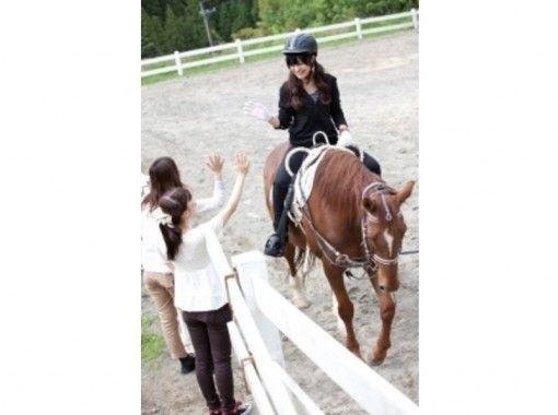 【宮崎・宮崎市・清武町】乗馬はじめませんか?引き馬・馬場10周コース(15分)