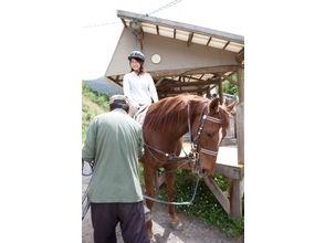 【宮崎・初心者向け!】体験乗馬レッスン(40分コース)の画像