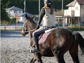 【三重・北勢で乗馬体験】乗馬教室・本格入門コースの画像