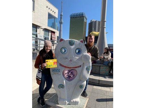 [Tokyo ・ Asakusa] TOKYO cat tour! Cat & animal lovers gather! Visit cat spots & walk around a cat-zamamai townの紹介画像