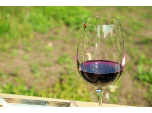 【Miyagi・Akiu】Sustainable Vineyard Picnicの紹介画像