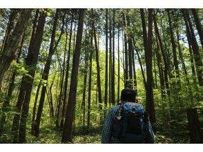 【Miyagi・Sendai】Green City Sendai : Morning hike & market brunch