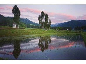 【니이카타 ·에 치고 유자] 여행 체리로 둘러싼 유자 봄 주유 코스 (가이드 없음)