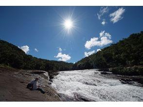 【西表島】亜熱帯の森トレッキング (お弁当付き)(2名様以上)の画像