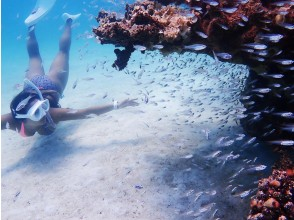 [Okinawa Ishigaki Island] blue cave and island landings and snorkeling experience of phantom (1 day course)