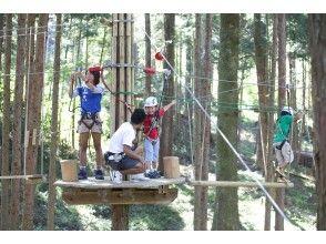 [Hyogo / Okukan Nabe] ★ Renewal OPEN ★ Canopy Course ★ Forest Adventure Okukan Nabe Canopy Course