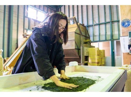 【宮崎・新富町】<新感覚の日本茶体験>手もみで日本茶焙煎&石臼挽き抹茶ドリンクづくりの紹介画像