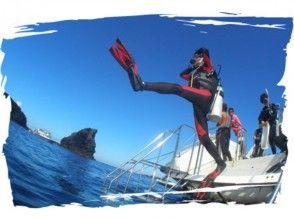 【沖縄本島・慶良間・チービシ】ファンダイビング 2ボートの画像