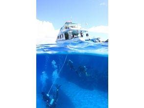 【沖縄 粟国島・渡名喜島】ファンダイビング 離島遠征2ボートの画像