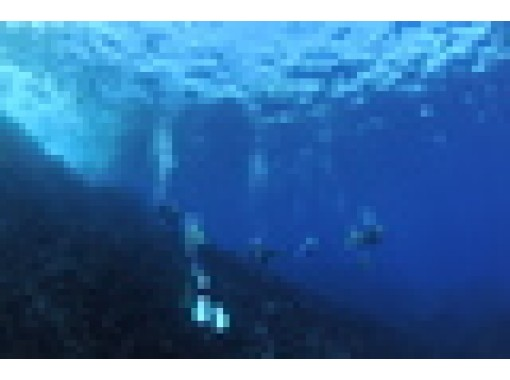 https://img.activityjapan.com/10/32724/10000003272401_rqGhBek4_3.jpg?version=1588049756