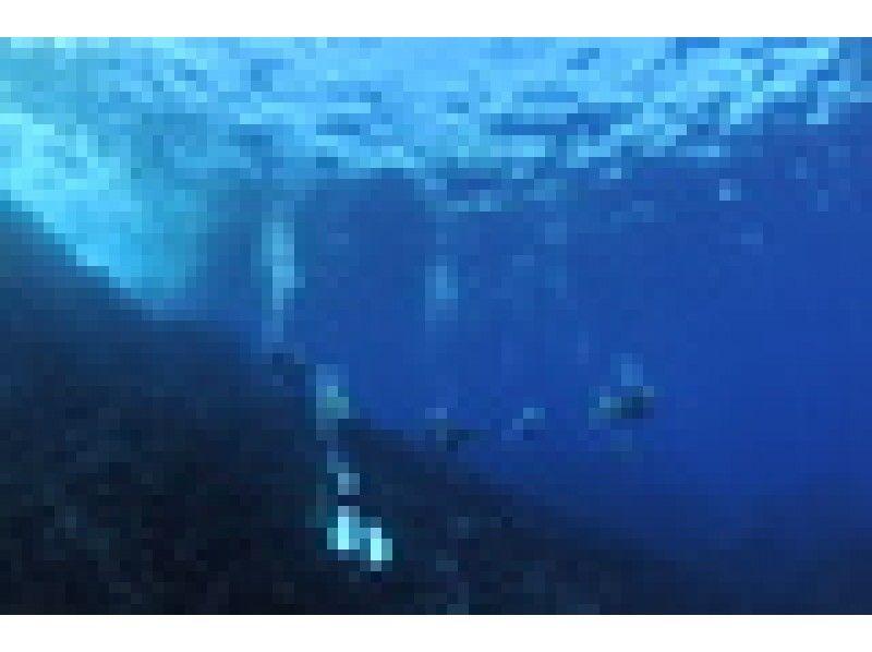 【葉山・逗子・湘南】都心から約1時間!日帰りできる海でPADIアドバンスド・オープンウォーターを取得!駅から歩いて約1分!の紹介画像