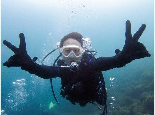 【静岡県・西伊豆 体験ダイビング1本】お魚いっぱいな井田の海でダイビングデビュー!撮影データ無料プレゼント付き 10歳以上 1名可 約3時間の紹介画像