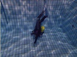 【相模大野・初心者歓迎】プールで体験ダイビングの画像
