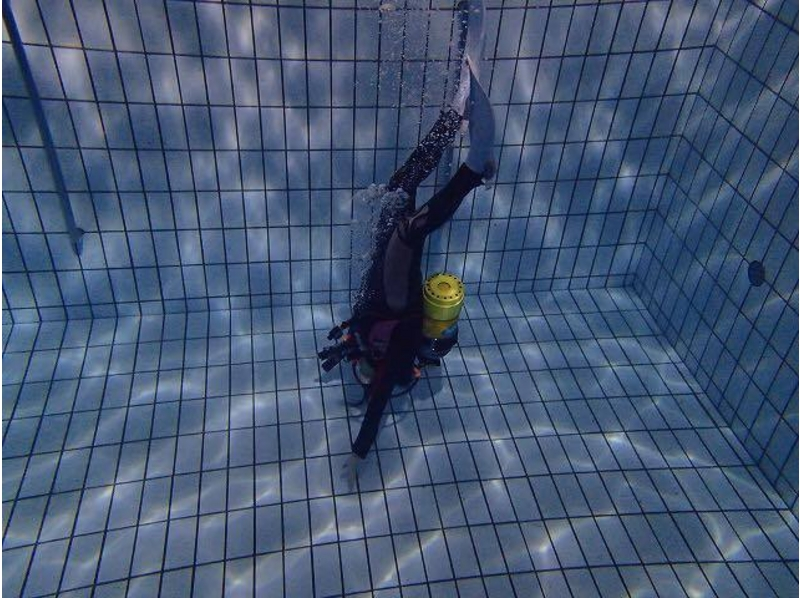 Experience diving in [Sagamiono beginner welcome] poolの紹介画像