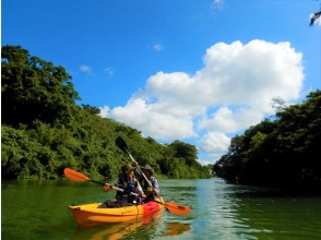 """Main island central area, convenient to access! """"Private plan"""" [1 group per day, limited to 4 people] Mangrove Kayak tour ★ """"3 dense"""" measures are perfect! Tour image gift★"""