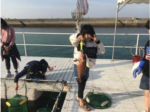 【熊本・天草市】イルカウォッチング&釣り堀セットプラン