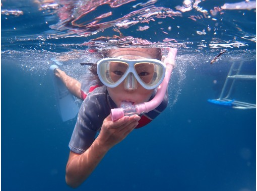 【沖縄・石垣島】1日たっぷり泳ごう!シュノーケリング✩石垣島の海を満喫しよう♫器材レンタル無料!ファミリー・お友達・カップル・お1様大歓迎!