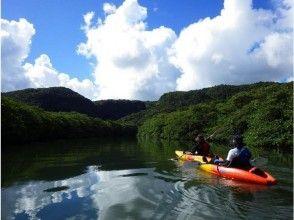 【西表島 カヌー トレッキング ジャングル 沢遊び】ピナイサーラの滝カヌーハリキリ1日コースの画像